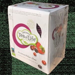 Forest Fruit Orgánico Tea of Life